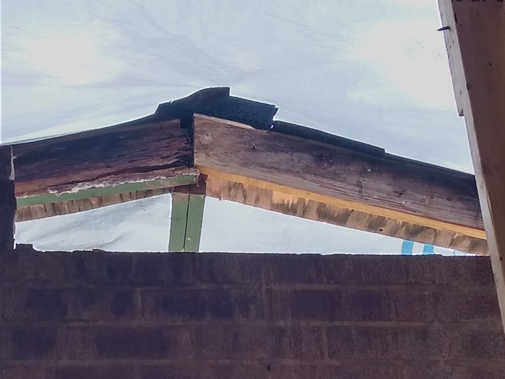 Rotten rafters along front chimney face