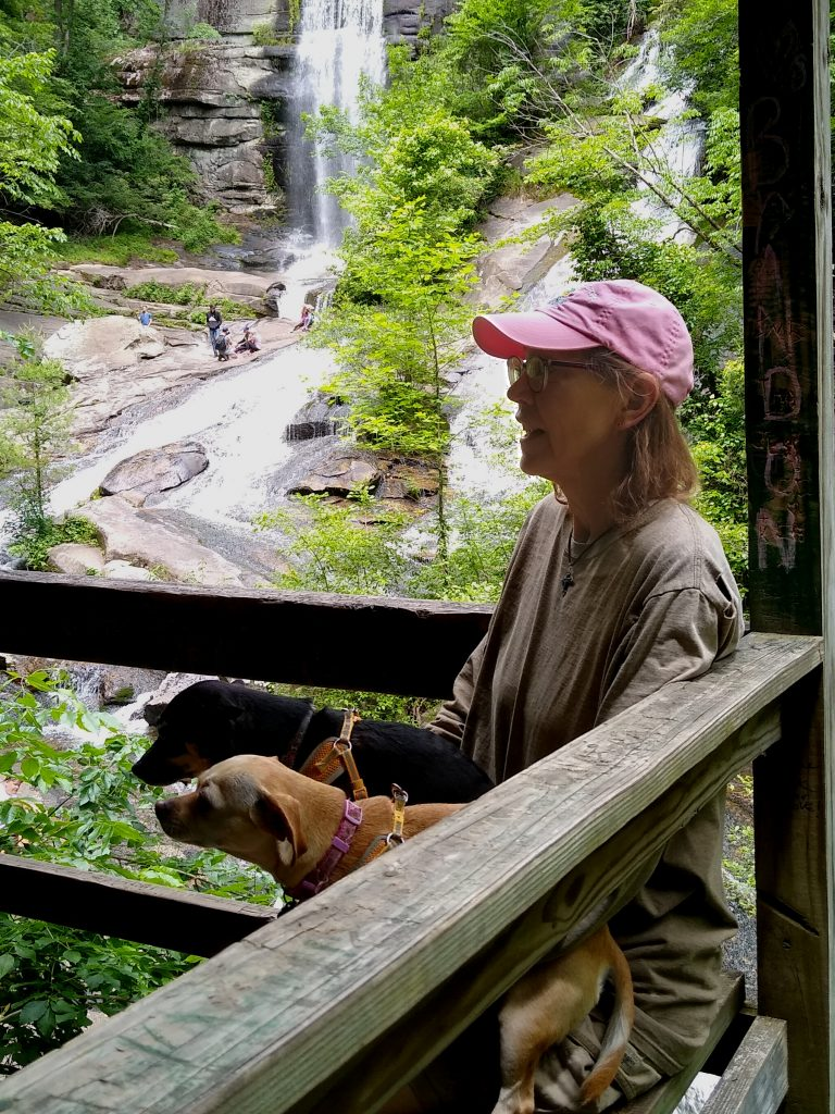 Sue and doggies at Twin Falls Overlook